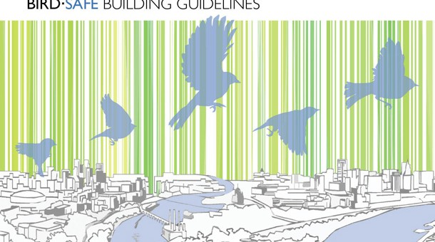 cover_bird-safe-building-guidelines